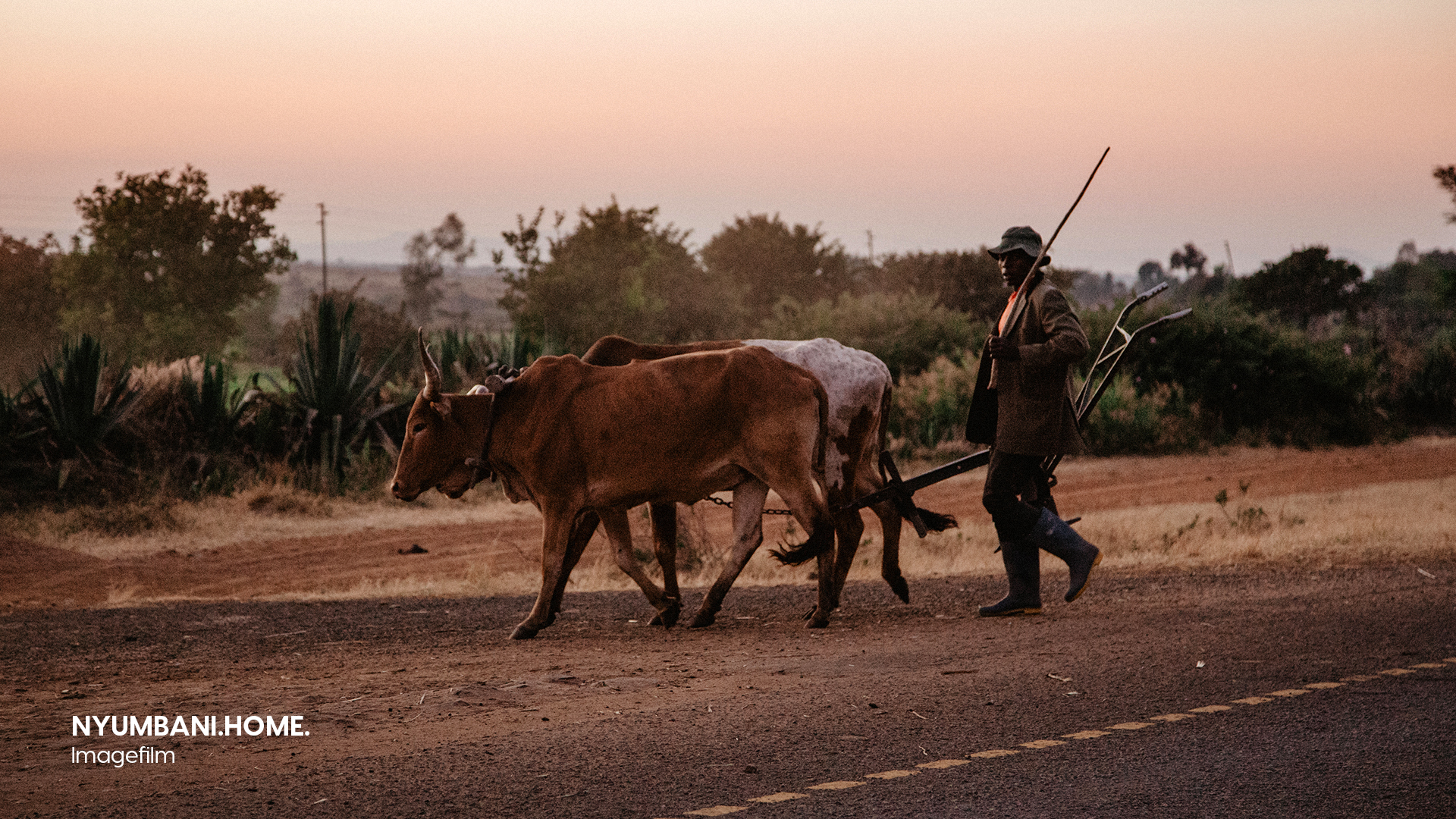 Filmproduktion Imagefilm Afrika Tansani